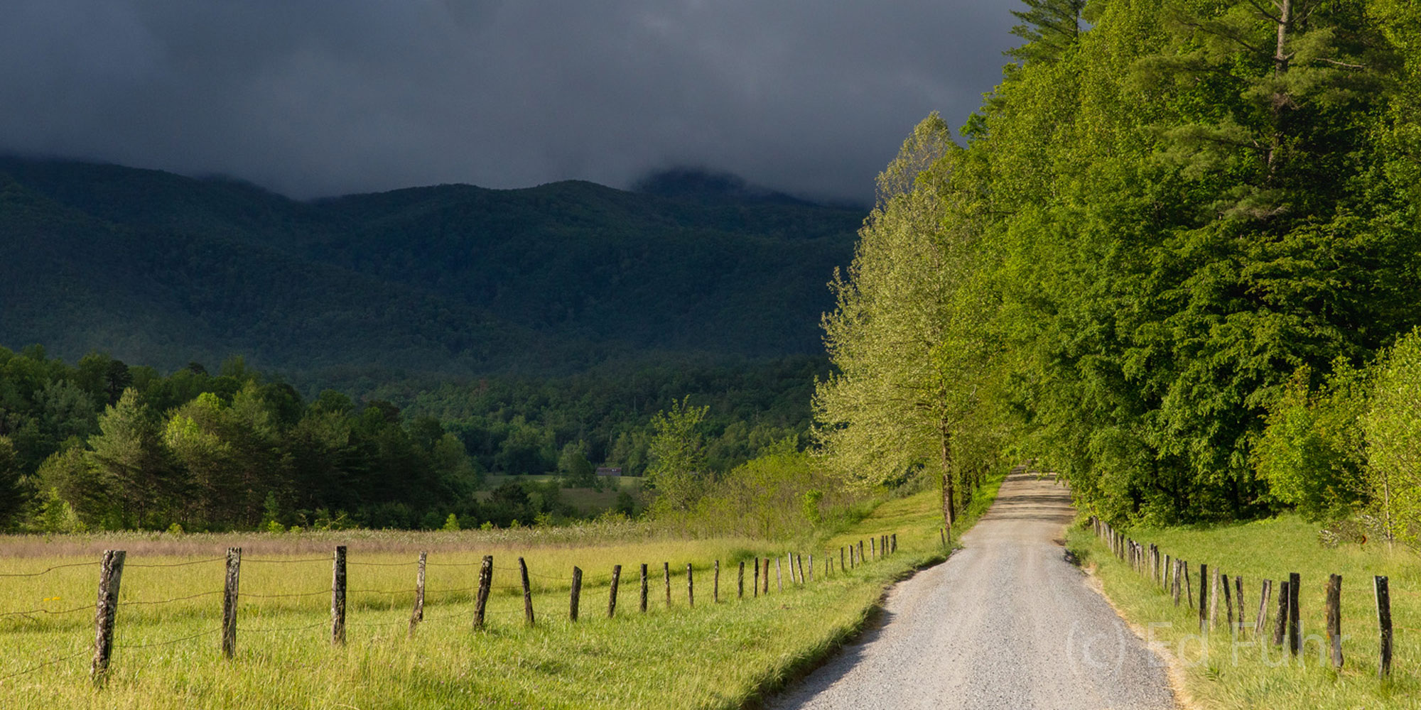 Hyatt Lane and Approaching Storm.  Hyatt Lane bisects Cades Cove and provides access to some of the best wildlife habitat in...