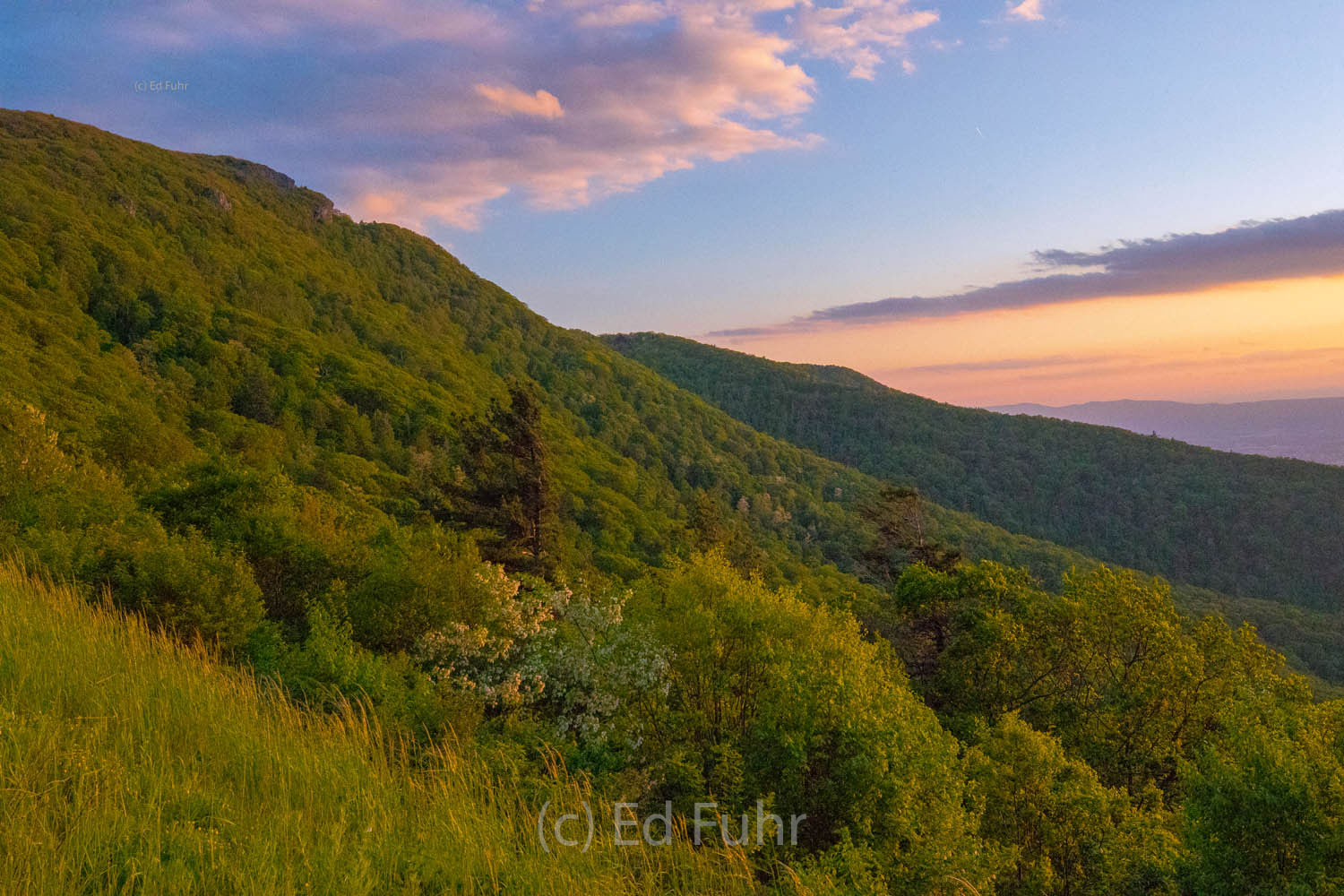 Shenandoah national park, spring, photograph, image, stony man mountain, photo