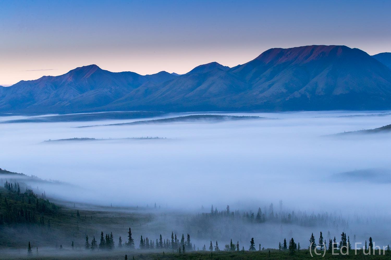 Silence Before Dawn