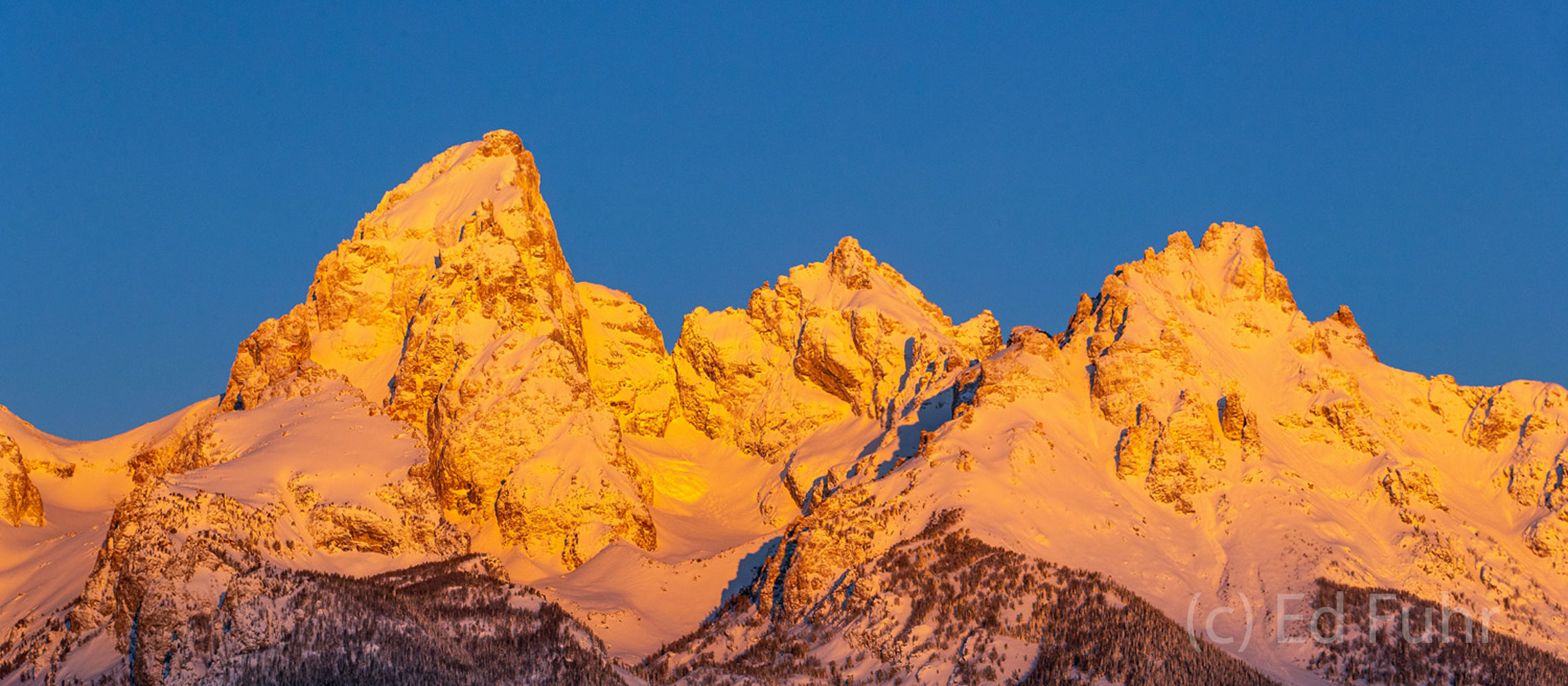 Sunrise has come and the Teton range glows in the early golden light of a new day.