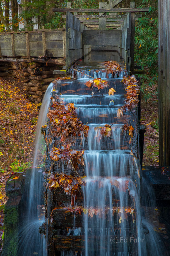 autumn, fall, foliage, smoky mountains, gsmnp, color, cades cove, photo