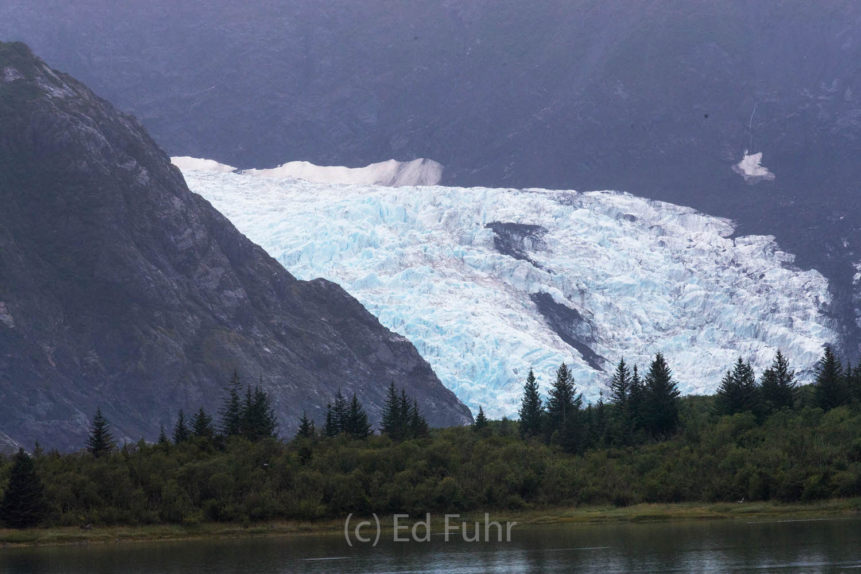 Rapidly shrinking Pedersen Glacier