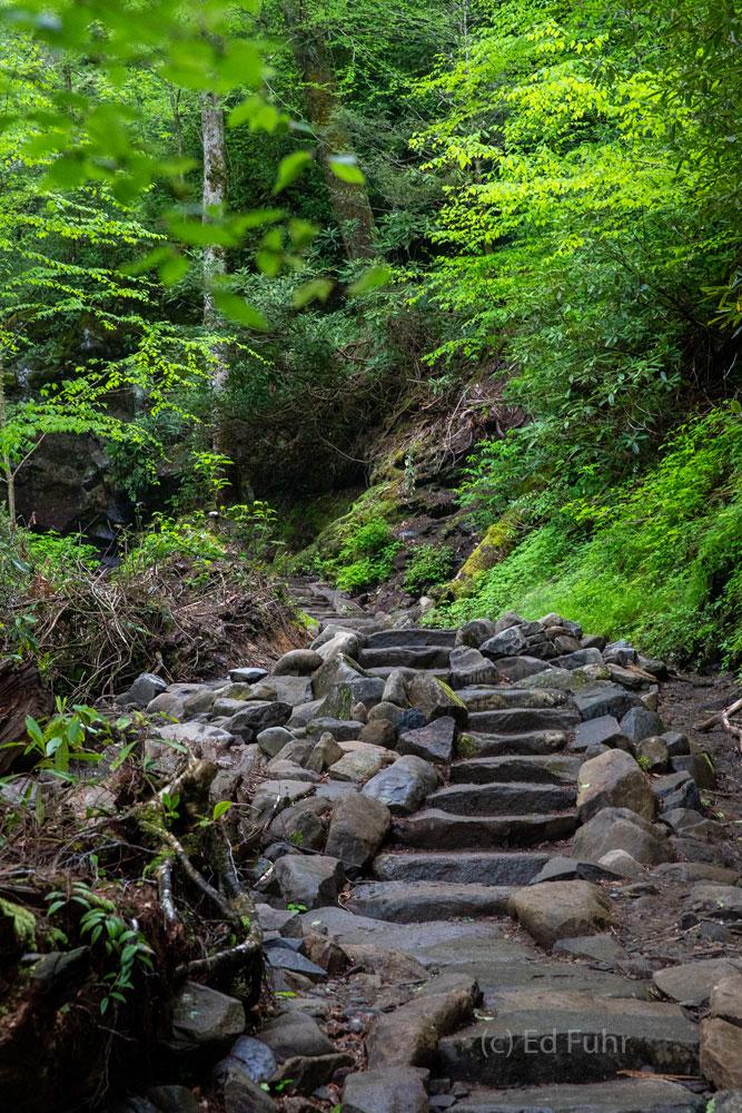 Trillium Gap Trail Steps