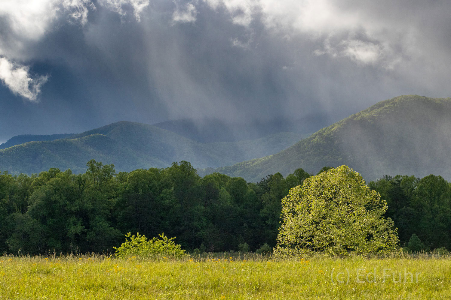 Rays of light break through the arriving storm clouds in Cades Cove.