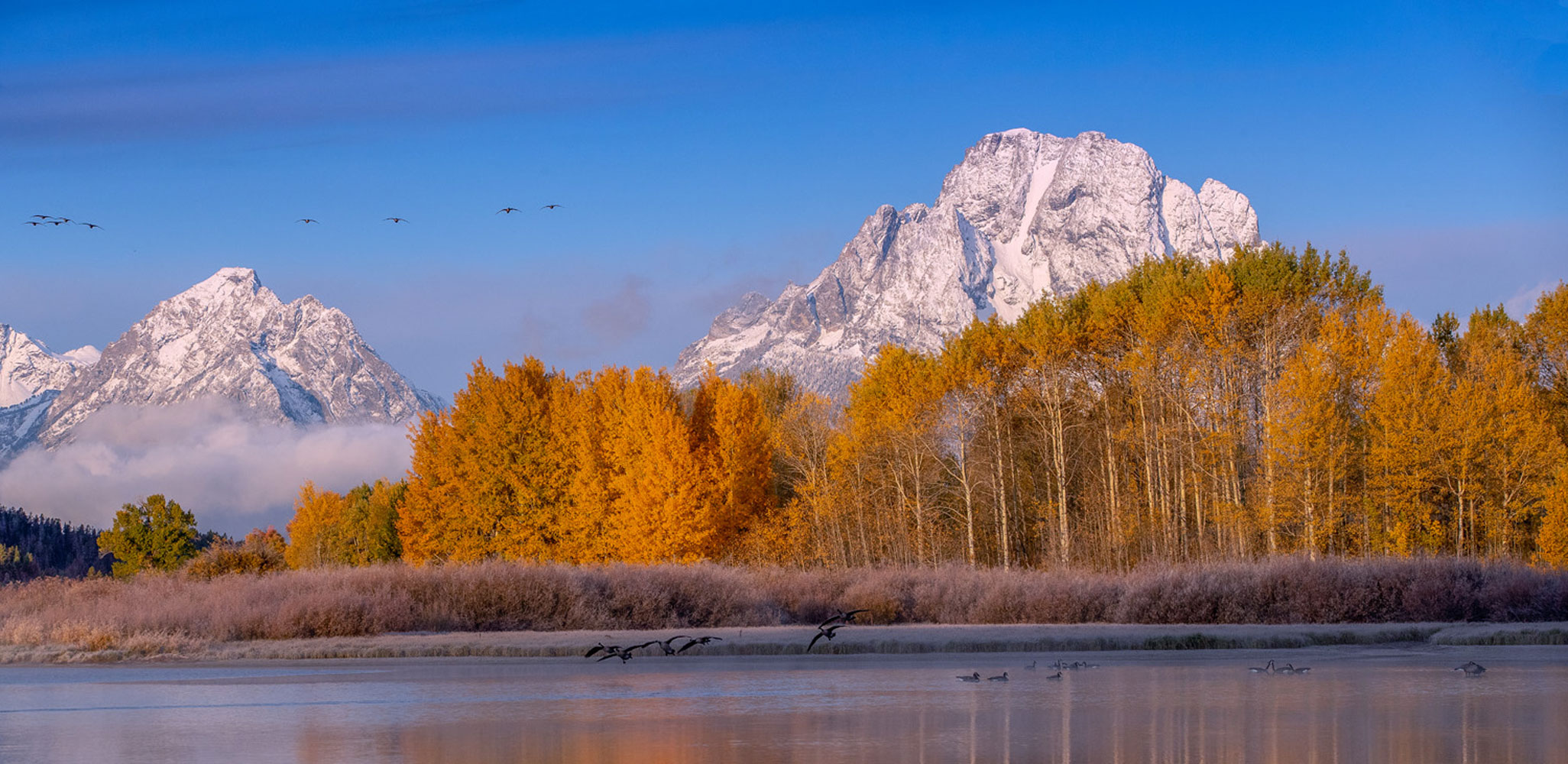 Perfect serenity at Oxbow Bend, a time for healing, and a place to reconnect.