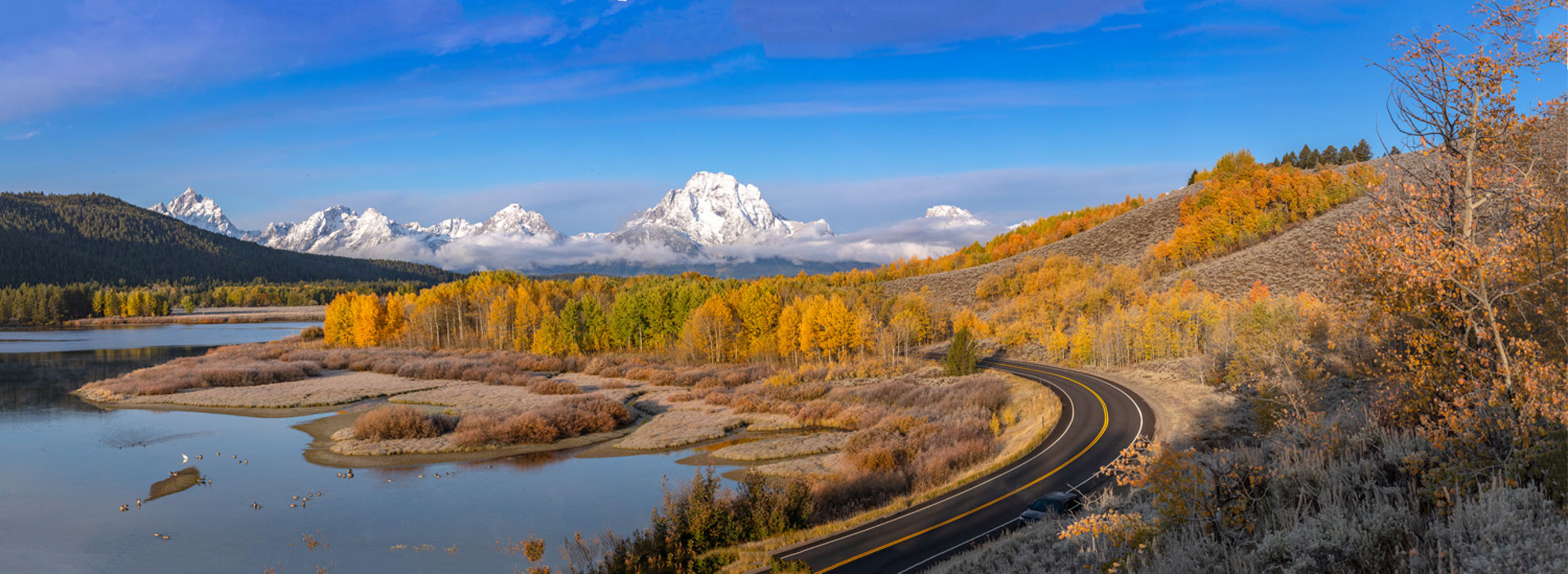 One of the most glorious spectacles in our national park system, autumn at Oxbow Bend.