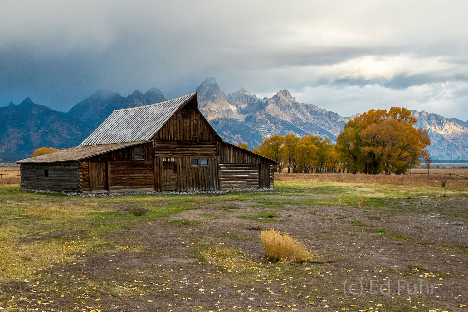 grand teton, fall, autumn, 2016, foliage, Tetons, photo