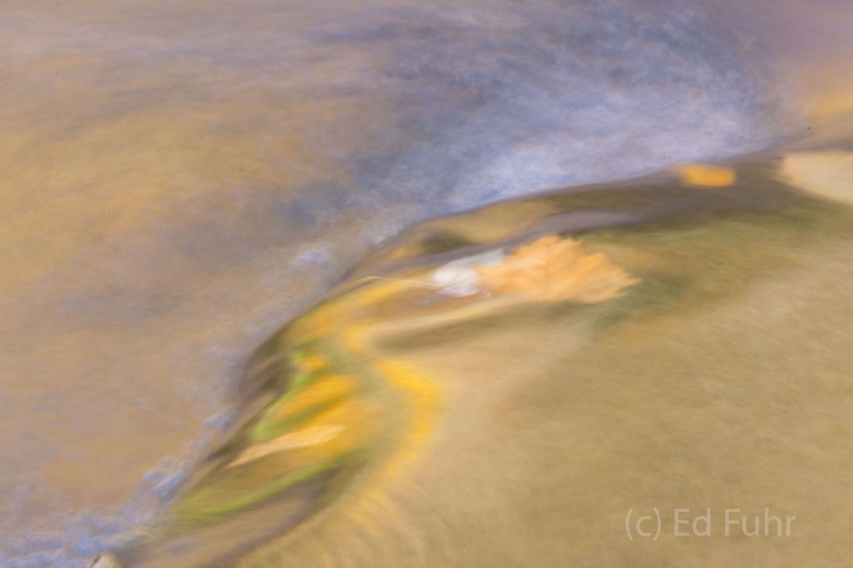 autumn, fall, foliage, smoky mountains, gsmnp, color, reflection, photo