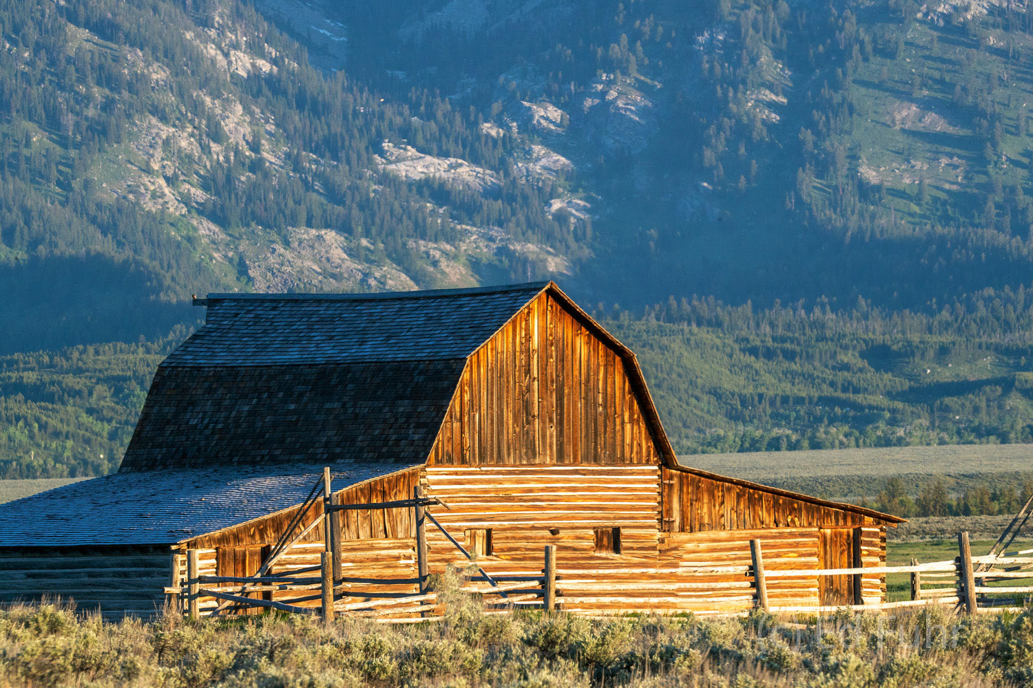 The John Moulton barn, one of the classic barns along Mormon Row, glows in the early sunrise.