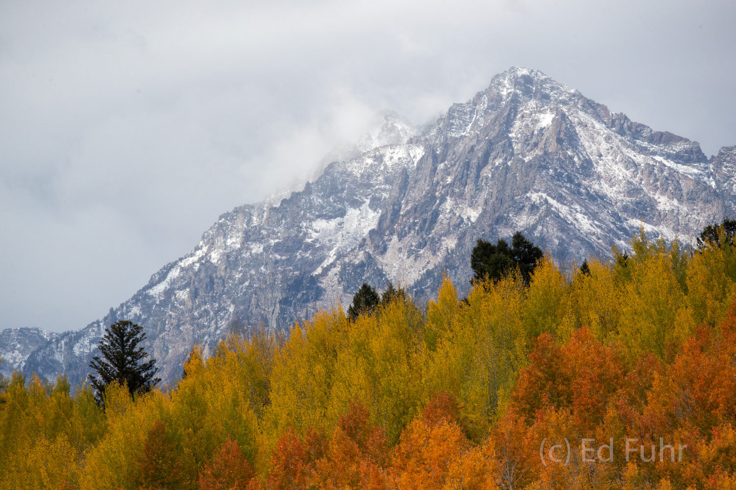 An early snow has coated the Teton Range above the still colorful ridges below.