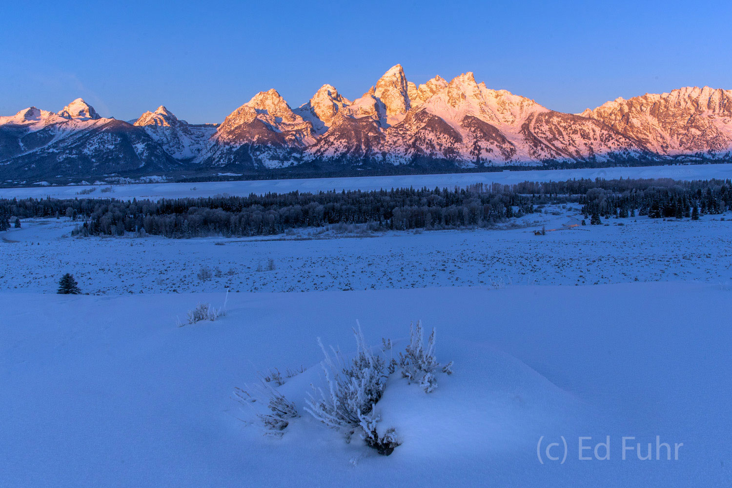 winter, sunrise, teton range, photo