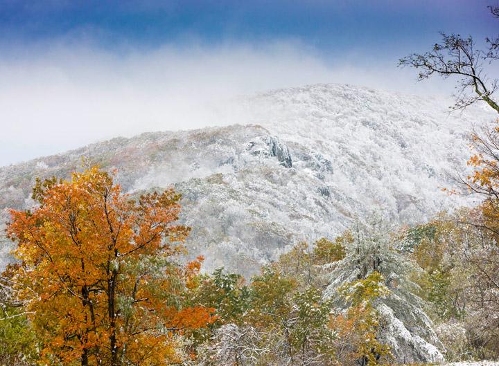 shenandoah, winter, snow, foliage, photo