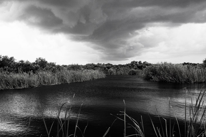 everglades, thunderstorm, photo