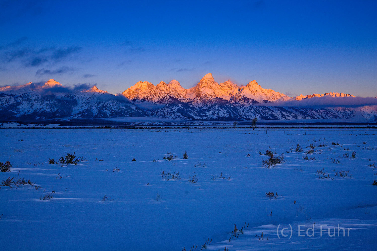 Across the frozen meadows and valley, the Grand Teton mountain range is ignited by the glow of a clear winter's dawn.