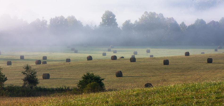 hay, cades coves, smoky mountains, photo