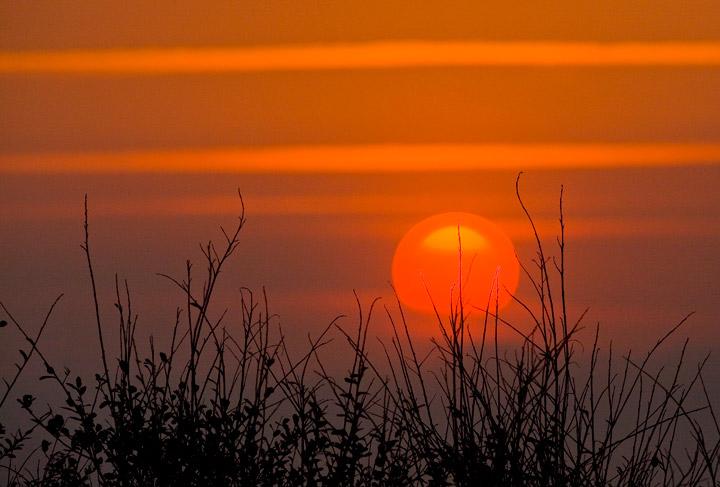 ocean, kiawah, sunrise, , photo
