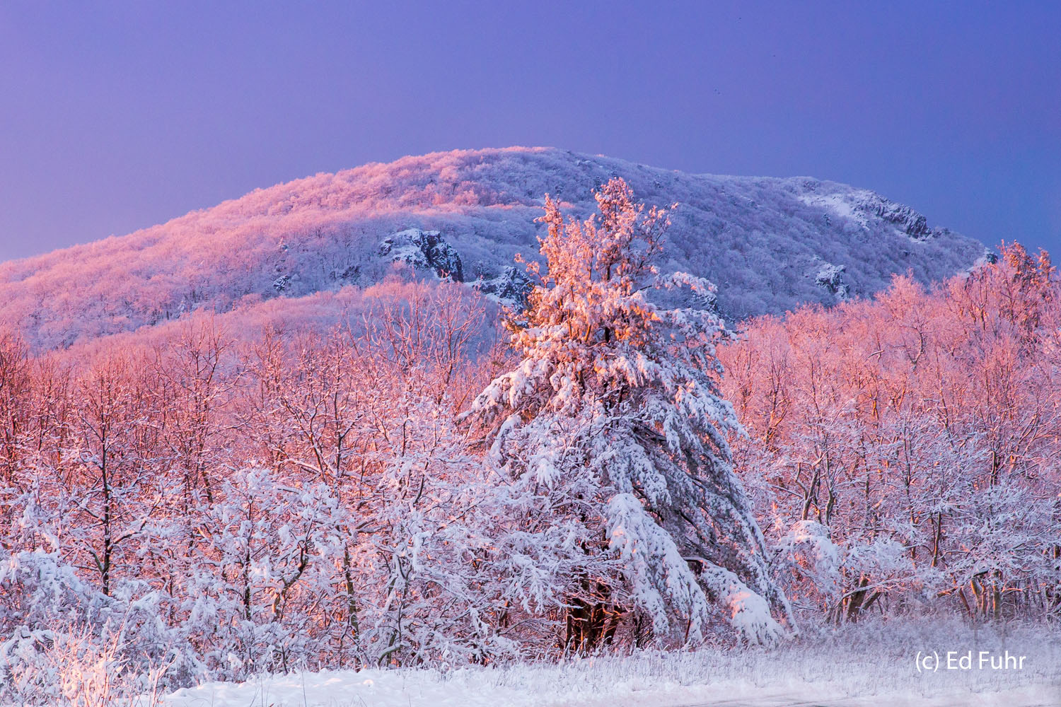 Shenandoah, photograph, skyline drive, winter, snow, thanksgiving, landscape, sunrise, photo