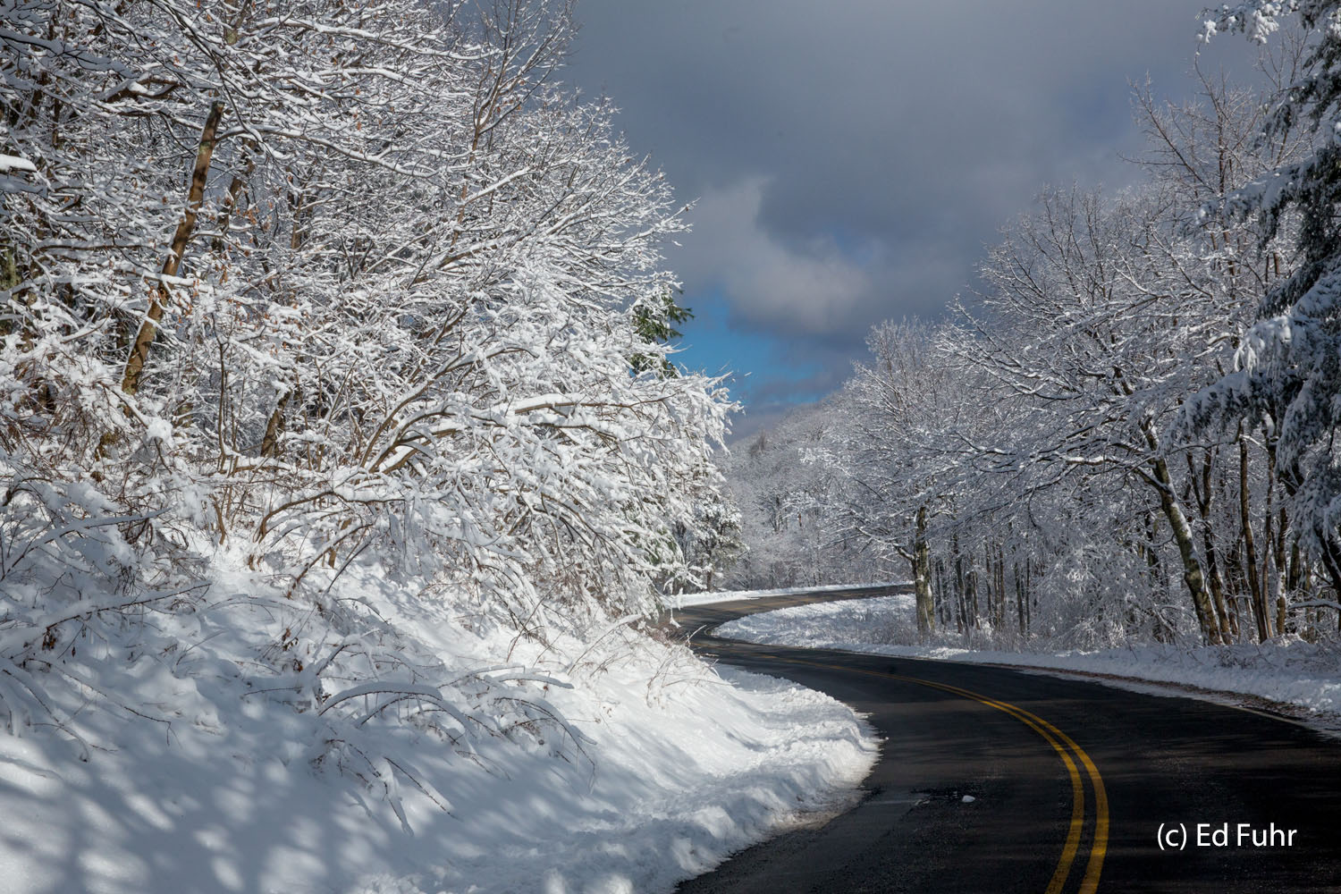 Solitude is not common on Skyline Drive except in winter when the only sounds are an occasional bird's call and the sound of...