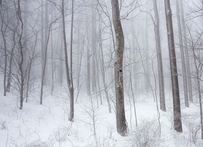 Shenandoah, Shenandoah National Park, photograph, photography, winter, images, photographs of Shenandoah National park, snow, photo