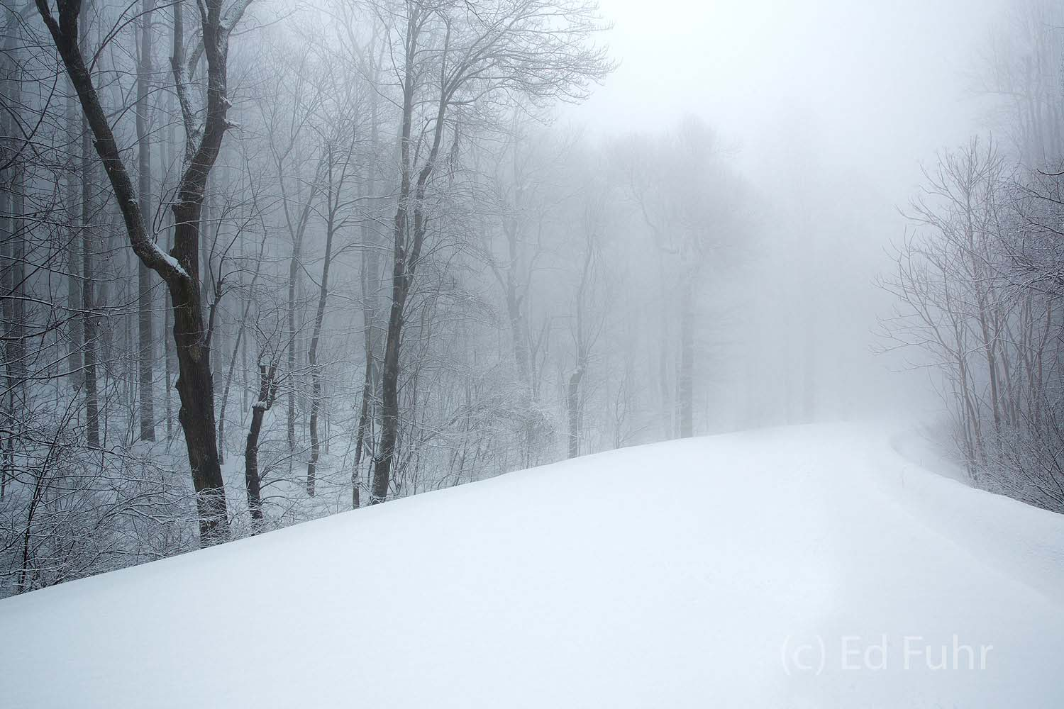 Shenandoah, Shenandoah National Park, photograph, photography, winter, images, photographs of Shenandoah National park, snow, photo