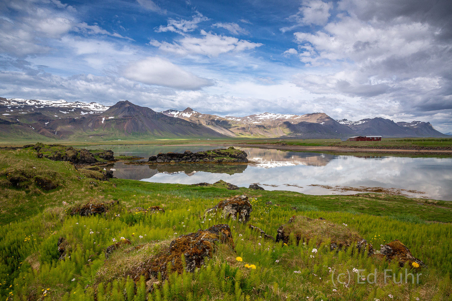 Near Arnastappi on the Snaefellsnes Peninsula, reflecting clouds, rich green meadows, snow-covered mountains, life in Iceland...