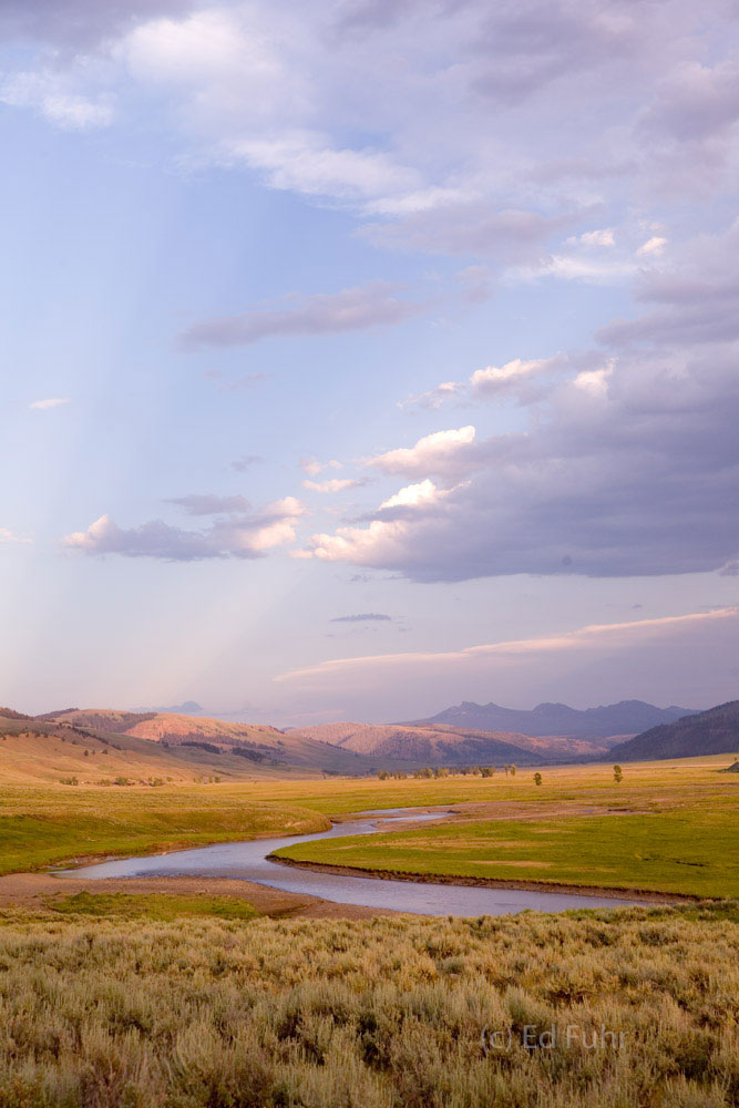 At sunset, the Lamar Valley can become incredibly still and painted in gentle pastels.