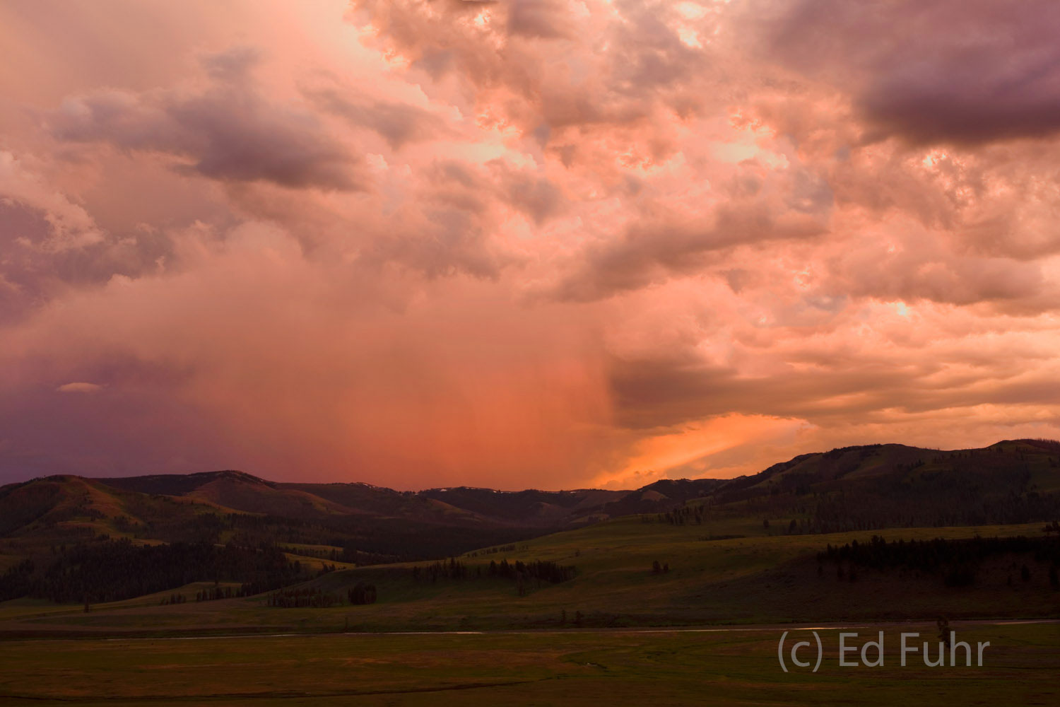 A storm crests the western horizon just before sunset over the Lamar Valley.