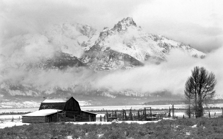 mormon row, tetons, photo