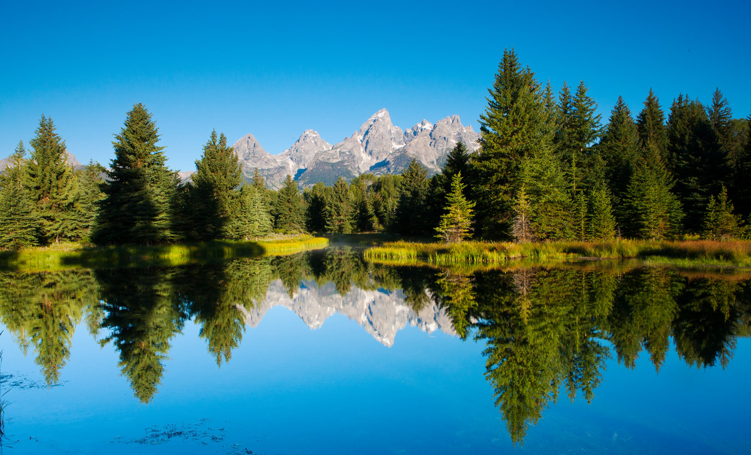 schwabacher's landing, tetons, beaver, photo