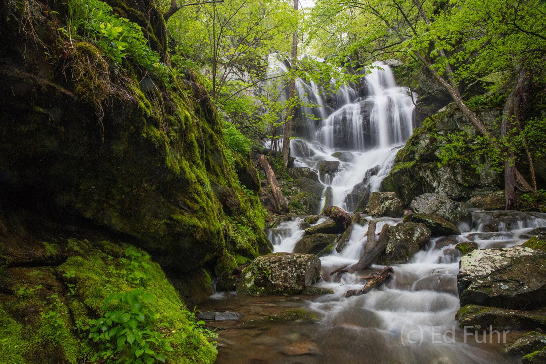 Shenandoah national park, image, photograph, lower Doyles falls, Doyle, spring, photo