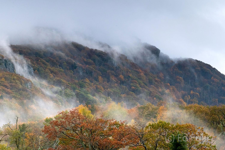 Fog blows across Little Stony Man Mountain as fall's color reaches peak.