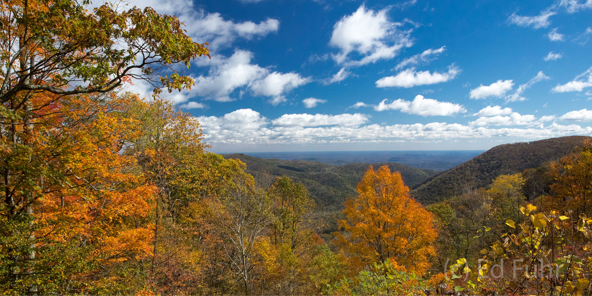 A colorful bouquet of oranges, reds and yellows transform this vista into one of the finest autumn views in Shenandoah, but you...