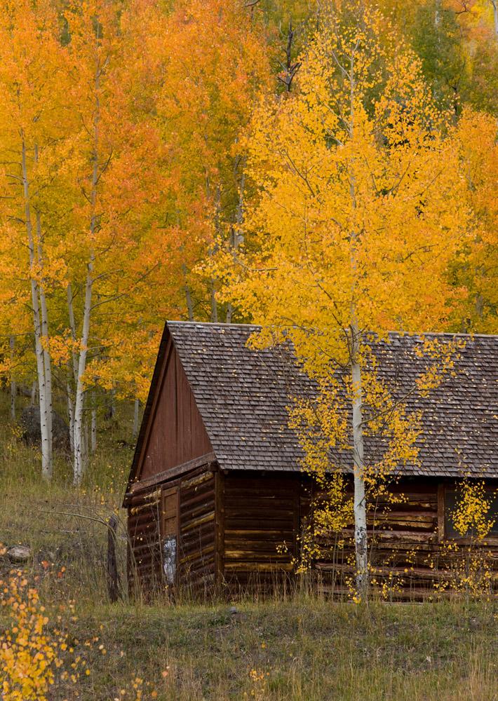 silver jack, cabin, san juan mountains, aspens, photo