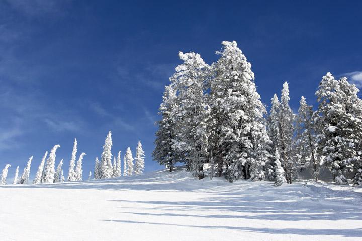 jackson hole, ski, photo