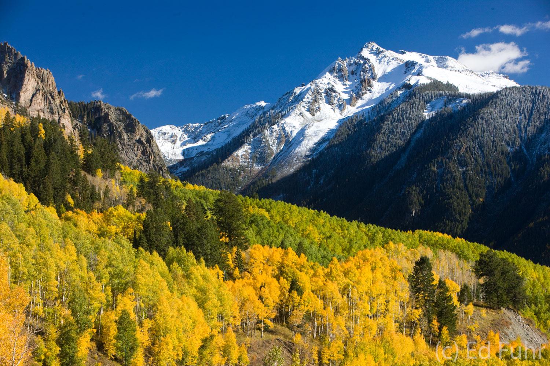 Wilson Peak, aspen, photo