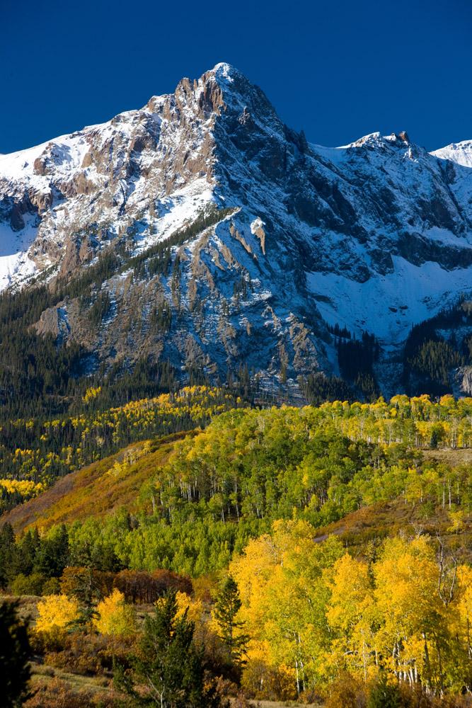 san juan mountains, snow, aspens, photo