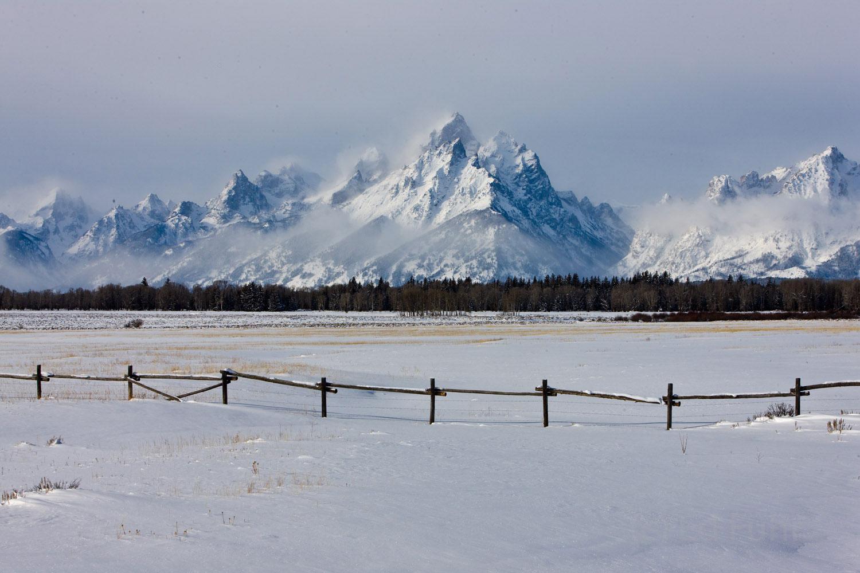 pasture, tetons, snow, photo