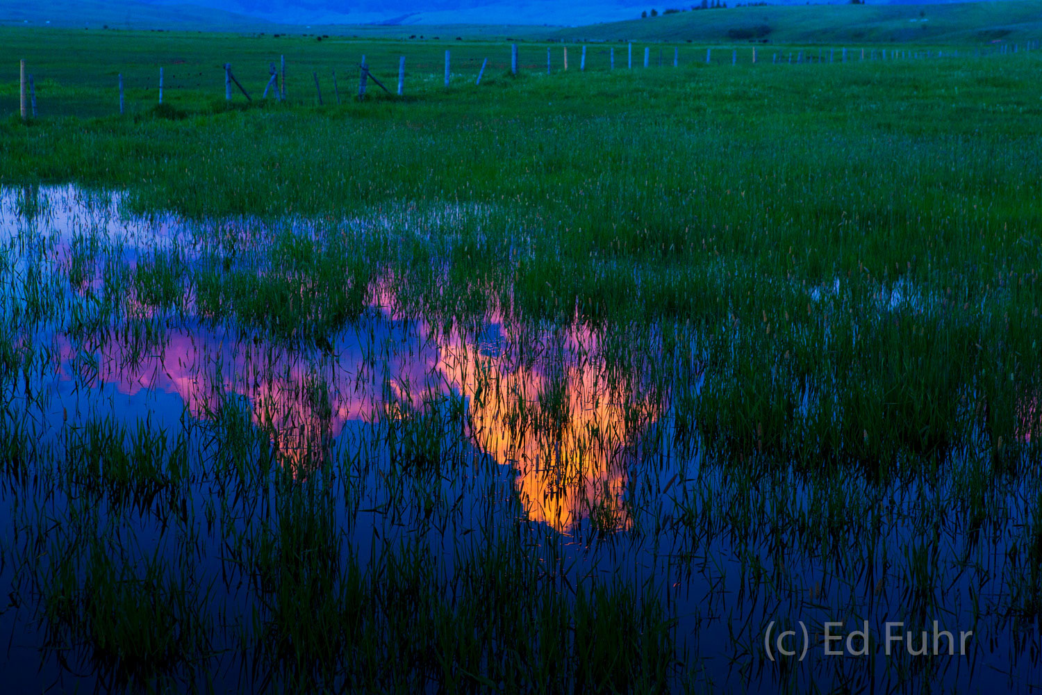 A spring pond of snow melt reflects the passing colors of dusk.
