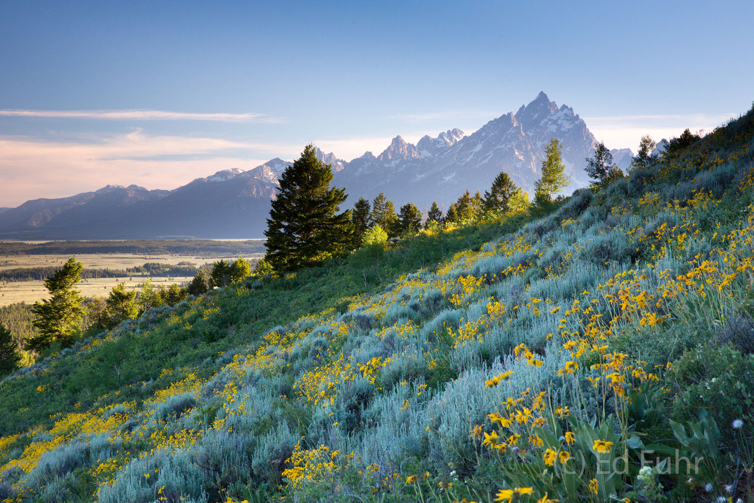 grand teton national park, signal mountain, photograph, image, 2013, photo
