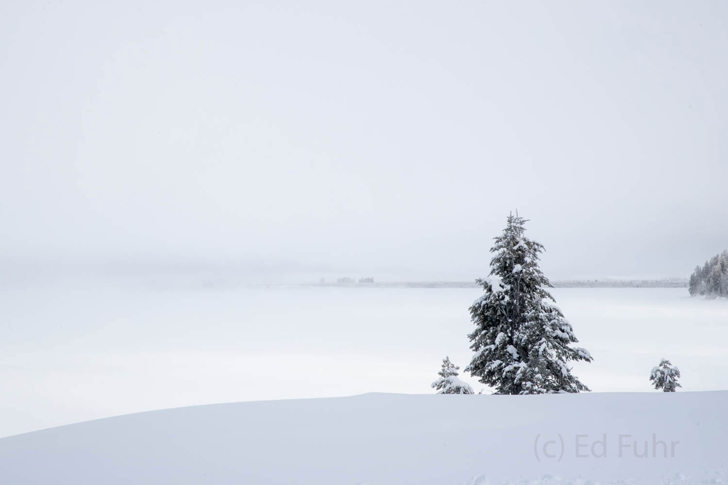 jackson lake, winter, 2016, grand teton, photograph, photo
