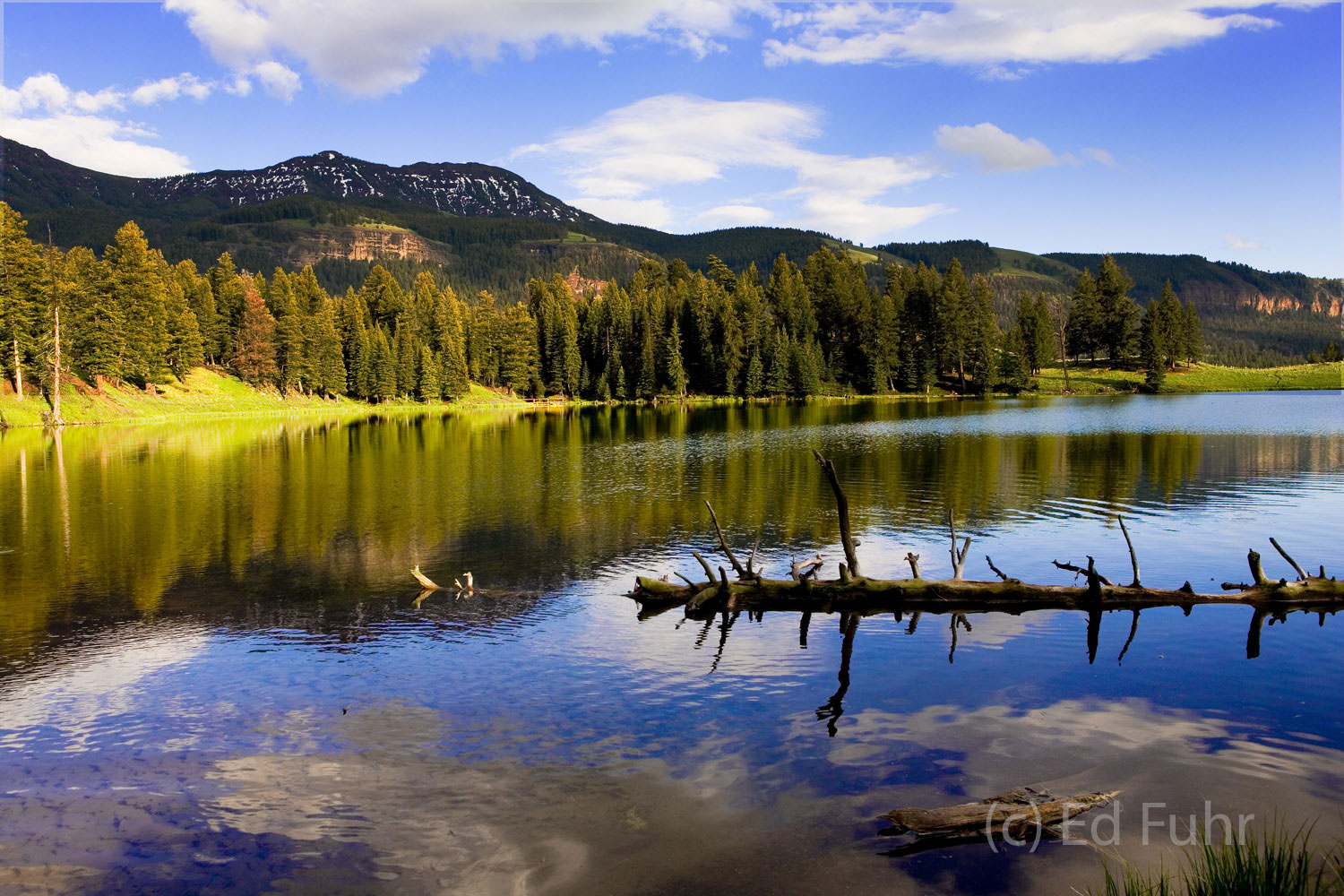 Shortly before sunset idyllic Trout Lake reflects its surrounding hillsides and bright blue sky.  In the early morning a coyote...