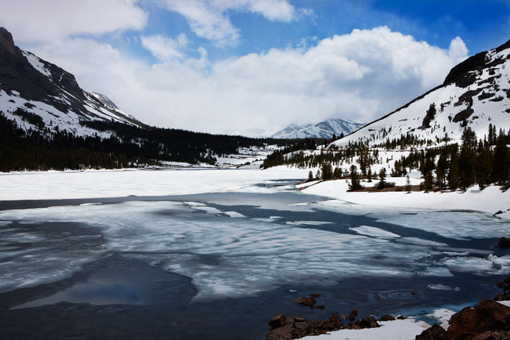 ellery lake, yosemite, , photo