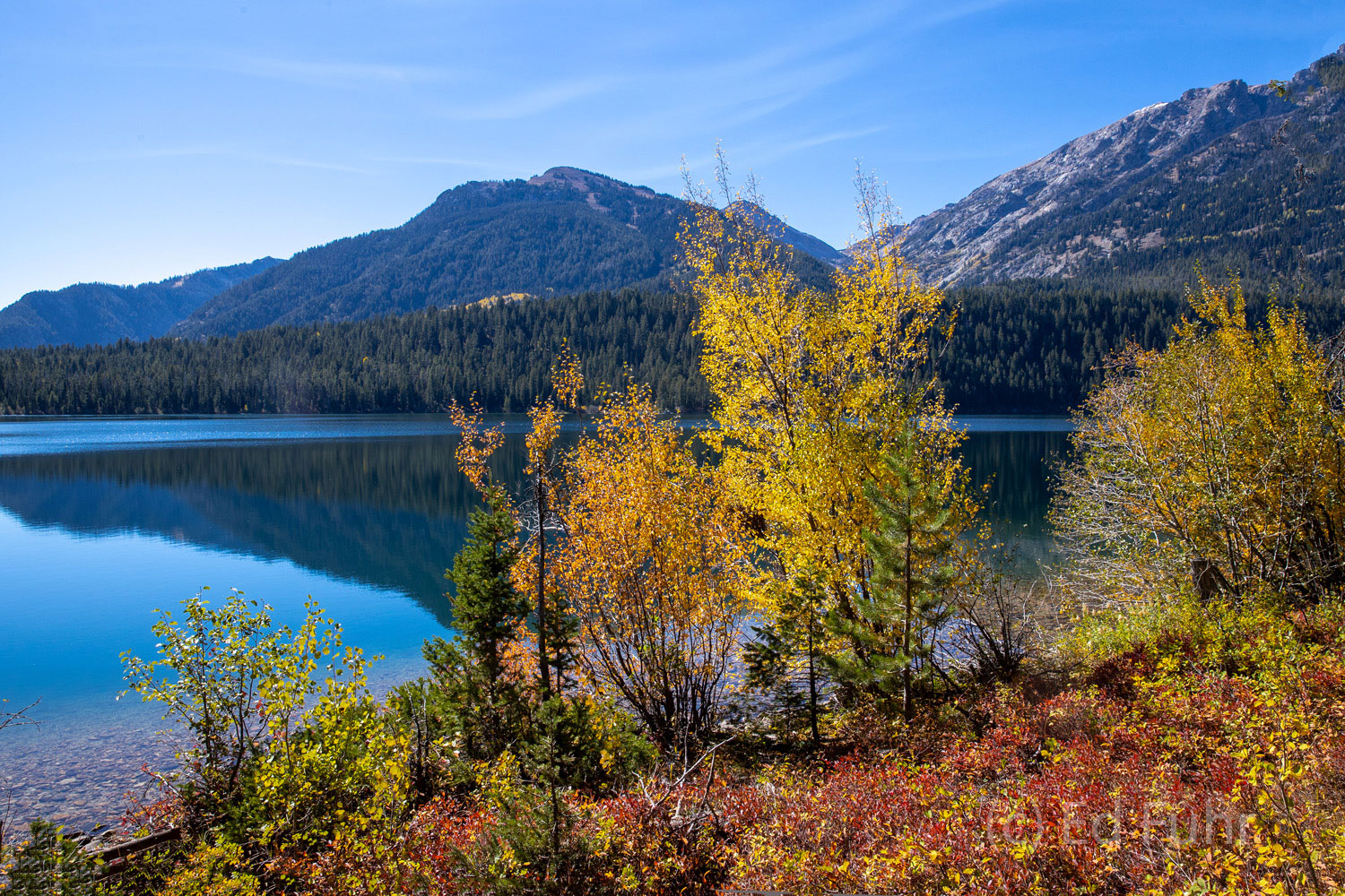 The shores of Phelps Lake have turned a vibrant red this late September afternoon.