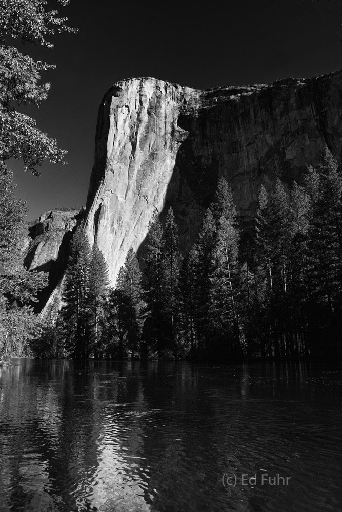 El Capitan reflects in the swollen Merced River just after sunrise.