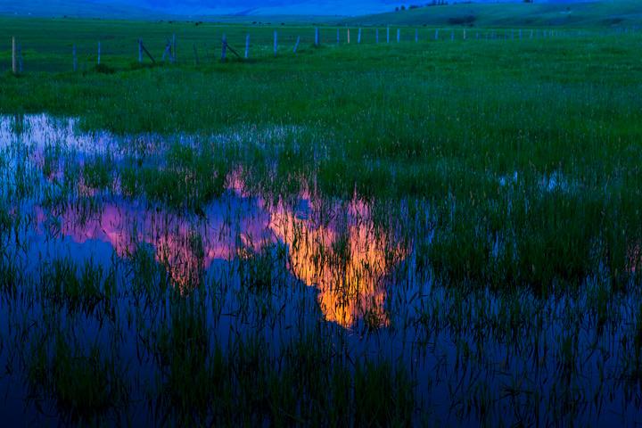 pond, teton, reflect, field, photo