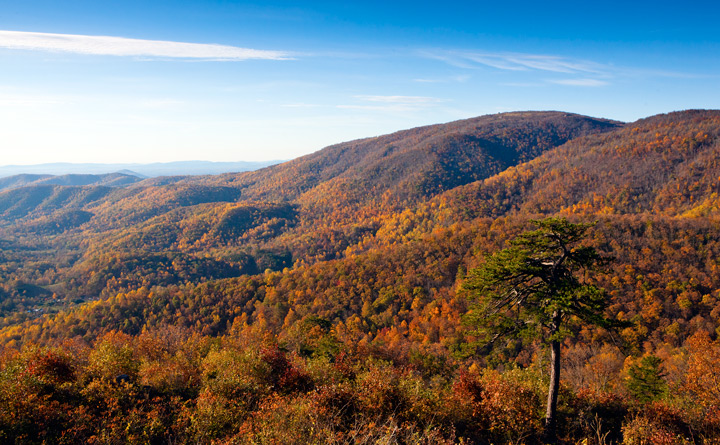 bacon hollow overlook, shenandoah national park, , photo