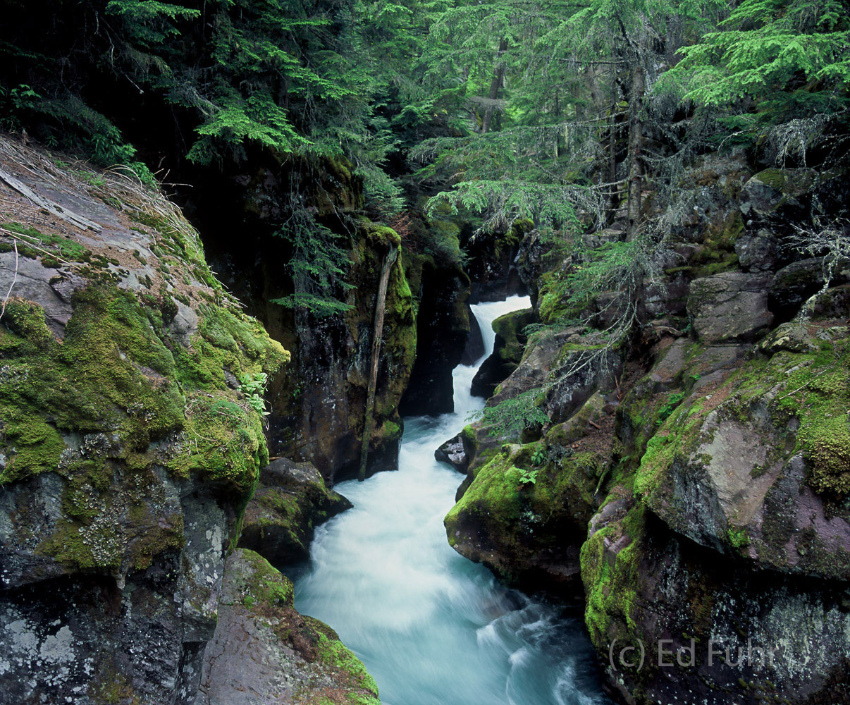 Avalanche Gorge swells with late spring runoff.