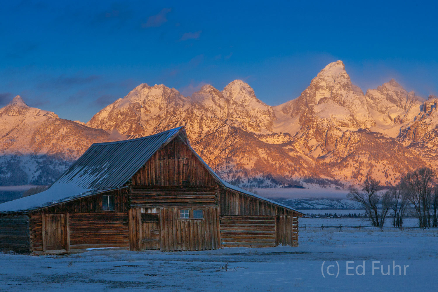 From the shadow of the barns, sunrise breaks and the Tetons glow in the light of a rare clear winter day.